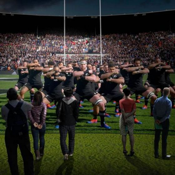 All Blacks Experience Guided Tour